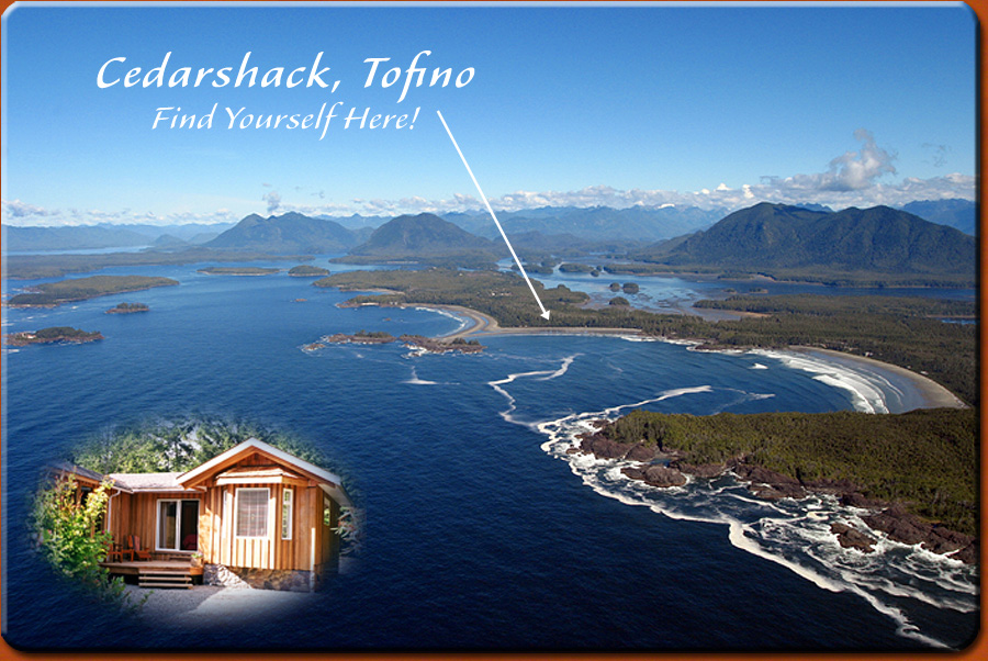 Tofino Cedarshack Cabin Rental Tofino Bc Chesterman Beach Hot